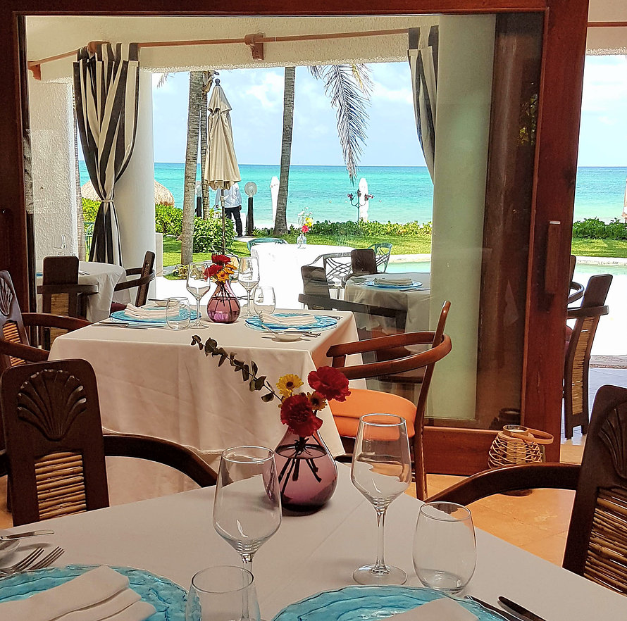 Pavo Real by the Sea Playa Del Carmen